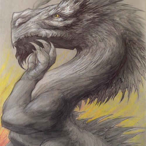 a pencil and coloured pencil dragon drawing for sale buy
