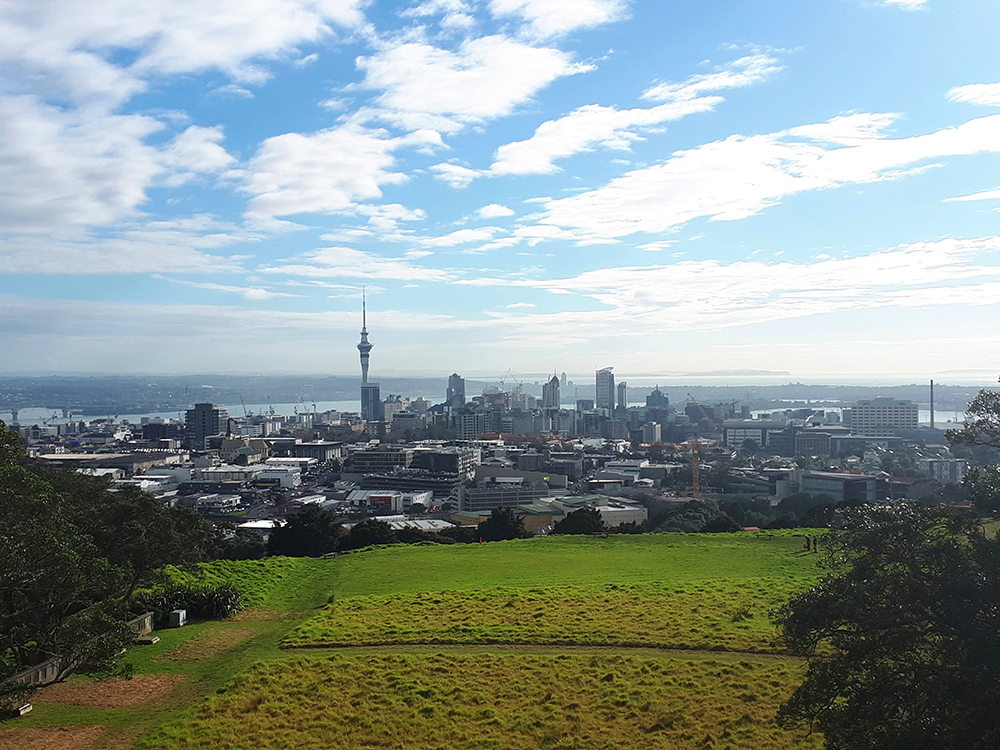 the view of Auckland from the top of the Mount Eden Park