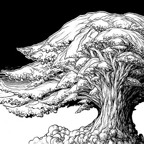 An ink drawing of a whimsical, gnarly black and white tree