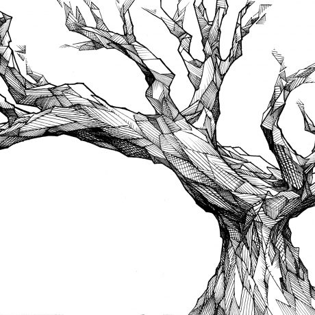 An ink drawing of a angular, menacing, dead black and white tree