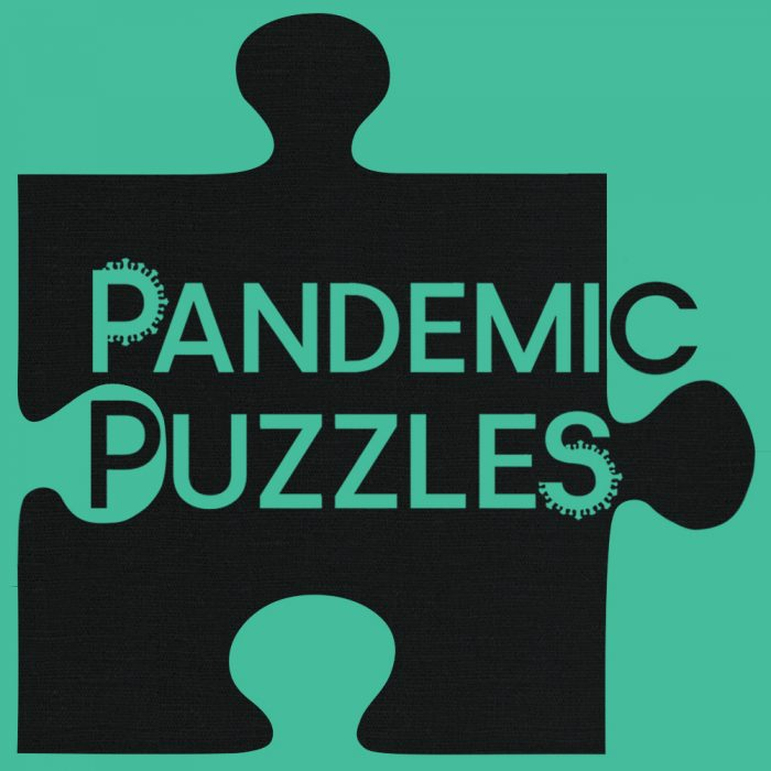 Pandemic Puzzles custom high quality jigsaw puzzle company logo