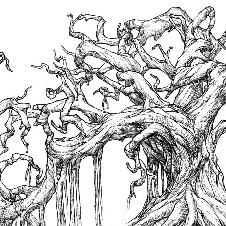 An ink drawing of a black and white swamp tree from my sketchbook project