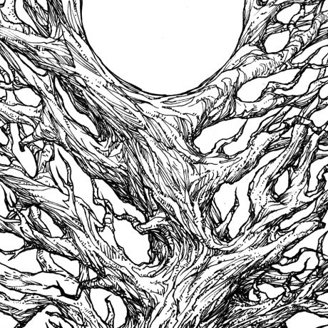 An ink drawing of a black and white of another gnarled and old looking tree from my sketchbook project